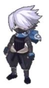 D5-ninja-4