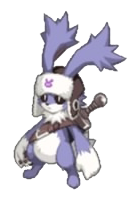 D5-rabbit-5