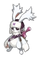 D5-rabbit-6