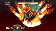 Tera Fire-D4
