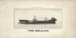 The delilah