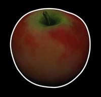 Гристольское яблоко