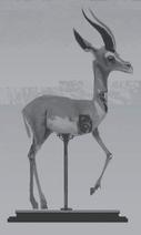 Gazelle full-body