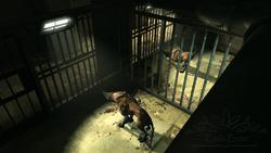 Wolfhound04