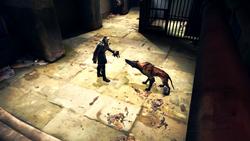 Wolfhound05