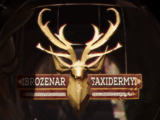 Brozenar Taxidermy