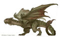 Dracoling Concept - Picture 1-.jpg