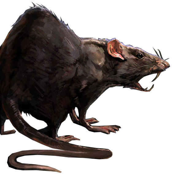 rats dishonored wiki fandom powered by wikia