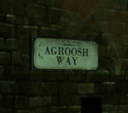 Agroosh Way1