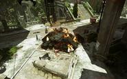 DOTO Conservatory Burning Pile
