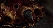 Bloodfly01