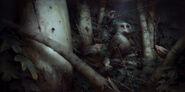Serkonan Night Birds, With Owl