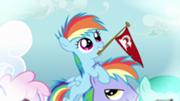 180px-Filly Rainbow Dash on a similar looking pony's head S3E12