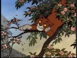 Thomas O'Malley Cat (song)