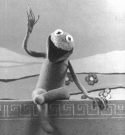 KermitSAF