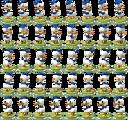 Donald360