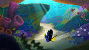 Dory opening concept