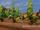 Farming/Gallery