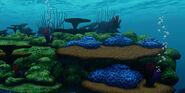 Gallery-Nemo-Nemo's Seascape