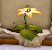 INterior-2.0-Magic Golden Flower after