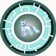 Winter Equifox Power Disc