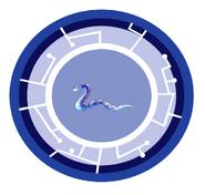 Aquaconda Power Disc