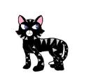 Lucky (black cat)