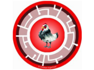 French Hen Power Disc