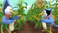 Sheriff Callie's Wild West - Callie's Blue Jay Blues - Blue Jay Birds