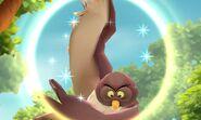 DMW - Owl