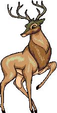 Bambi-Adult RichB