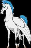 HERCULES Pegasus RichB