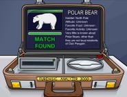 200px-Polarear