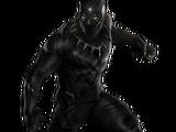 Pantera Negra/Galería