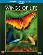 WingsofLife Bluray