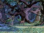 Bambi's Mother appearing in The Sword in the Stone.