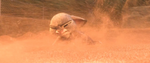 Judy di badai pasir