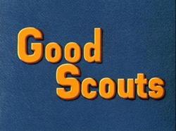 Goodscouts