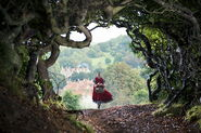 Itw-red-riding-hood
