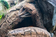 TOL Rattlesnake