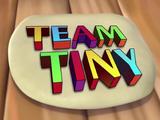 Team Tiny