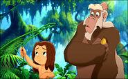 Tarzan II zugor