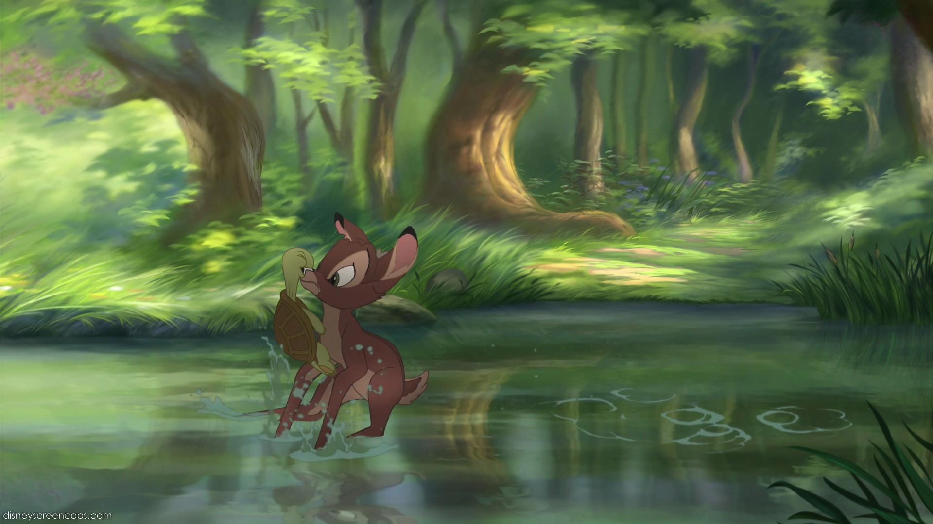 Forest | Disney Wiki | FANDOM powered by Wikia