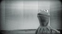 Muppets-com60