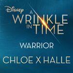 Warrior - ChloeXHalle