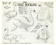 The Ugly Duckling swan model