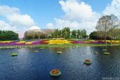Epcot-International-Flower-and-Garden-Festival Full 29650