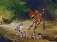 Bambi-disneyscreencaps.com-774