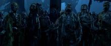 Cursed crew of the black pearl