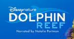 Dolphin Reef Logo